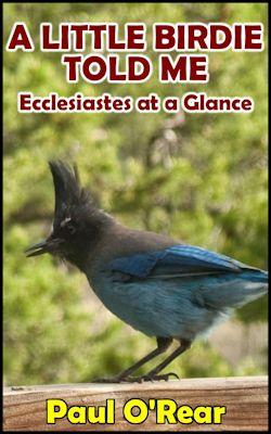 Little Birdie book